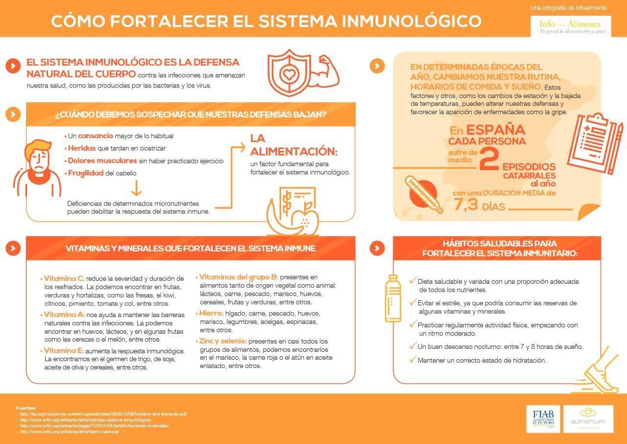 Una dieta equilibrada contribuye a reforzar el sistema inmunol gico en invierno noroeste madrid - Alimentos sistema inmunologico ...